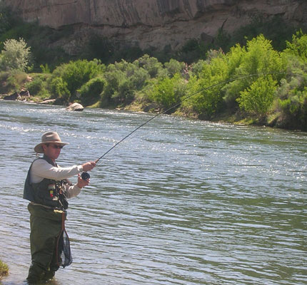 Fly Fishing Wading on the San Juan River